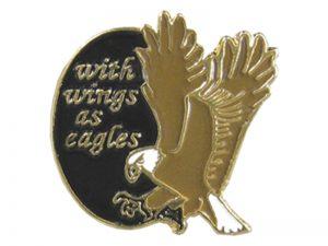 LAPEL PIN WINGS AS EAGLES PK12