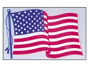 AMERICAN WINDOW STICKER PC 50