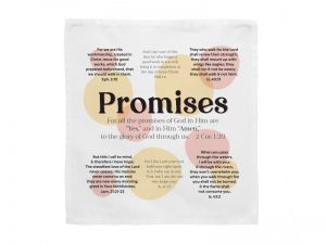 PRAYERS IN MY POCKET PROMISES 8X8 6PC