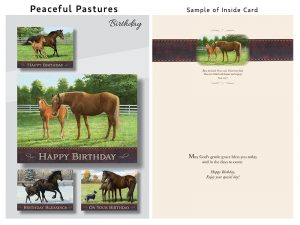 BOXED CARDS BIRTHDAY PEACEFUL PASTURES